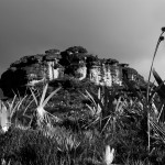 Monte Roraima  2011   ®Rafael Duarte